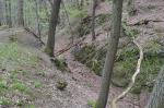 Abb. 1: Ein Abschnitt des tief eingeschnittenen Wegaufstieges am »Roten Steiger« (Foto: U. Münnich).