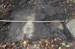 Abb. 2: Wegprofil mit Radspuren im Granit am Reinickenberg (Foto: U. Münnich).