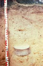 Abb. 3: Spätkaiserzeitliche Urne während der Freilegung (Foto: H. Stahlhofen).