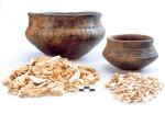 Abb. 4: Römisch-kaiserzeitliche Urnen und zugehöriger Leichenbrand (Foto: A. Hörentrup).